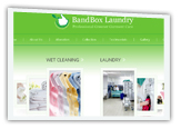 ironing, alterations and coin operated laundry website designing company